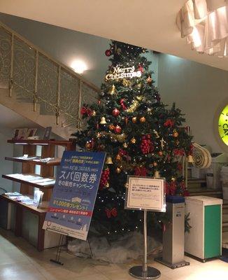 ニュージャパン観光株式会社 ニュージャパンサウナスパレディス