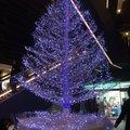 東京メトロ 半蔵門線 押上駅 (Z14)