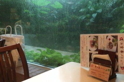夢の島カフェ