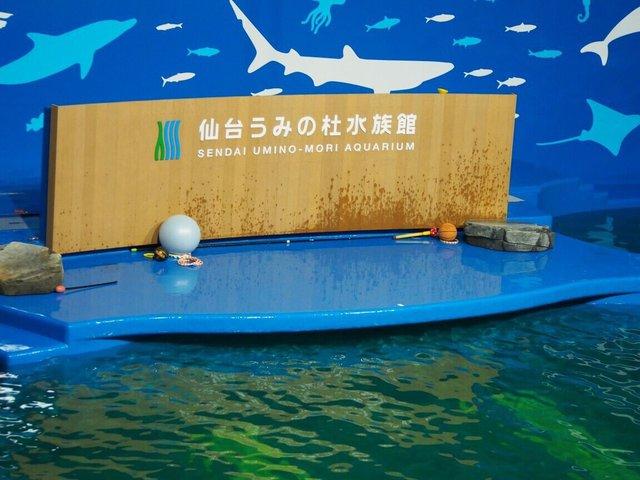 水族館 仙台