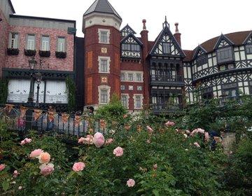 【札幌】繊細な色と花びらのバラに魅了される♡白い恋人パークの中庭にある「ローズガーデン」