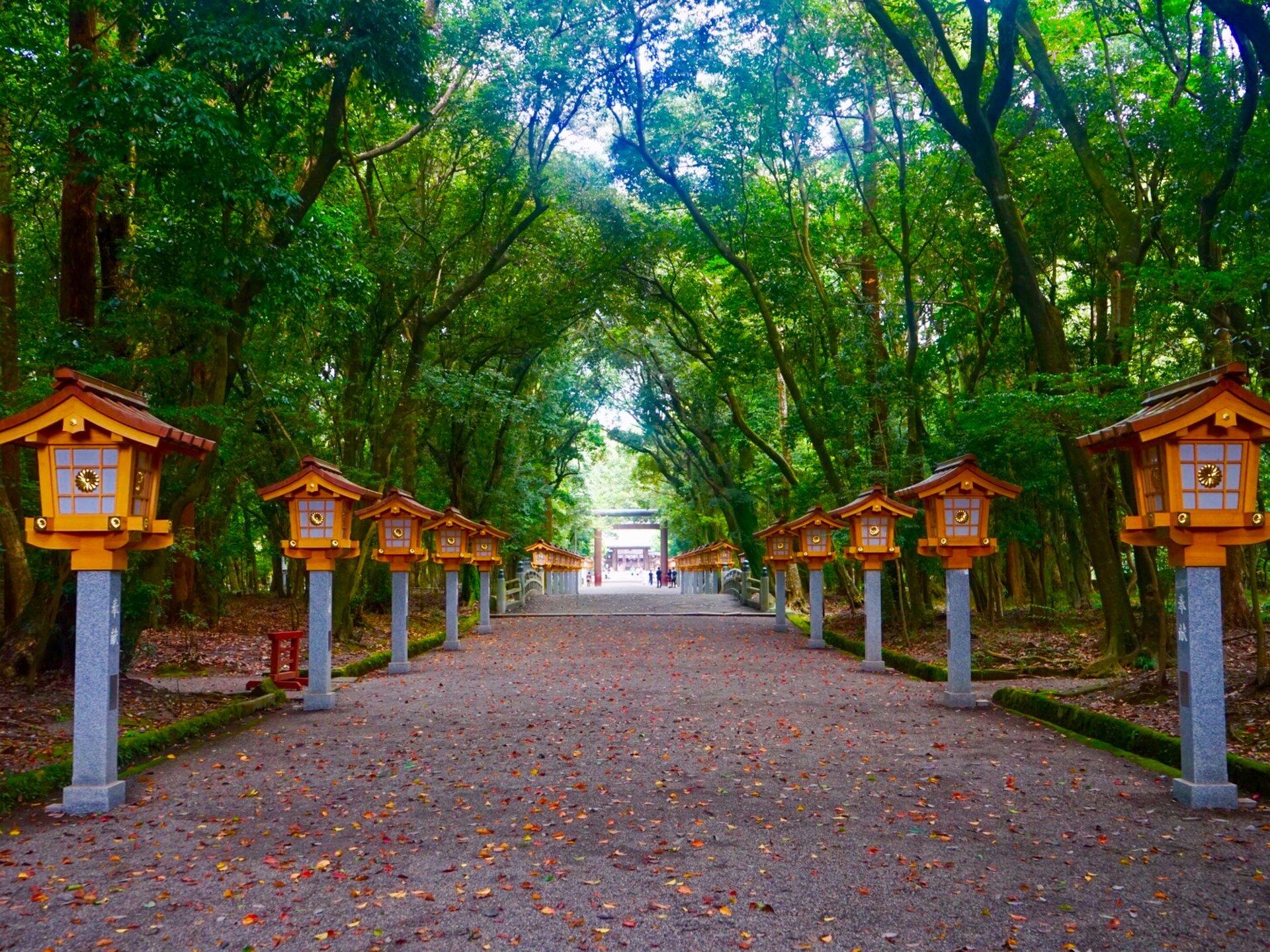 宮崎旅行の最終日は絶対ここ 宮崎神宮へ行った後は宮崎駅でチキン南蛮