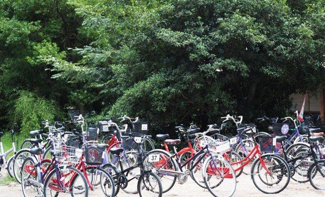 天橋立公園多目的広場