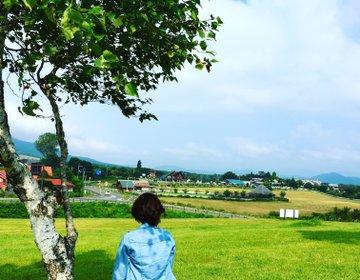 【蒜山高原】まるでハイジの世界!関西から日帰りで行ける!絶景写真にスポット お得な割引も♡