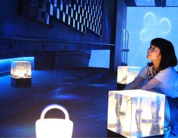 【東京スカイツリーにホタル?】すみだ水族館の期間限定『ほたるの夜』でデートや女子会をロマンチックに♡