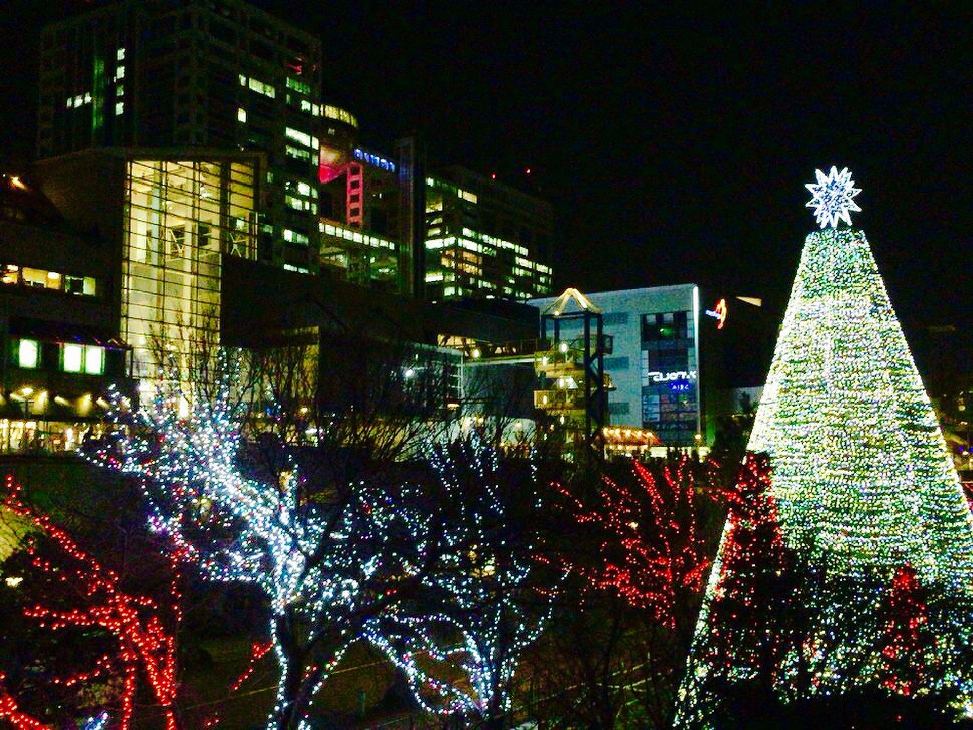 夜中にドライブがしたくなったら!冬の東京を満喫できる王道ドライブコース
