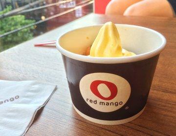 【吉祥寺】女性必見!!アメリカNo.1フローズンヨーグルト専門店「red mango」がオープン!!