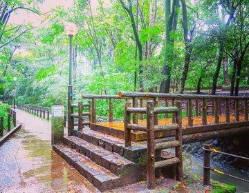 雨の日も楽しもう!東急大井町線沿いの隠れ人気スポットをお散歩デート♡