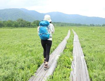 日帰りor1泊で行く!尾瀬ハイキング 首都圏からアクセスしやすい大自然で、高原の花を愛でる!