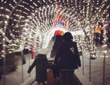 【北海道・広尾町】クリスマスシーズン到来!行ってみませんか?サンタランド