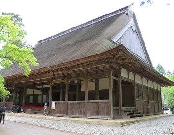 【千葉・匝瑳】最近某CMでも使われている、日本最古の大学「飯高寺」はまさにパワースポットだった!