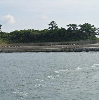 佐久島東港
