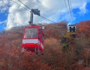 栃木県ドライブ♡明智平ロープウェイ展望台‼︎紅葉がステキな秋の日光を一望