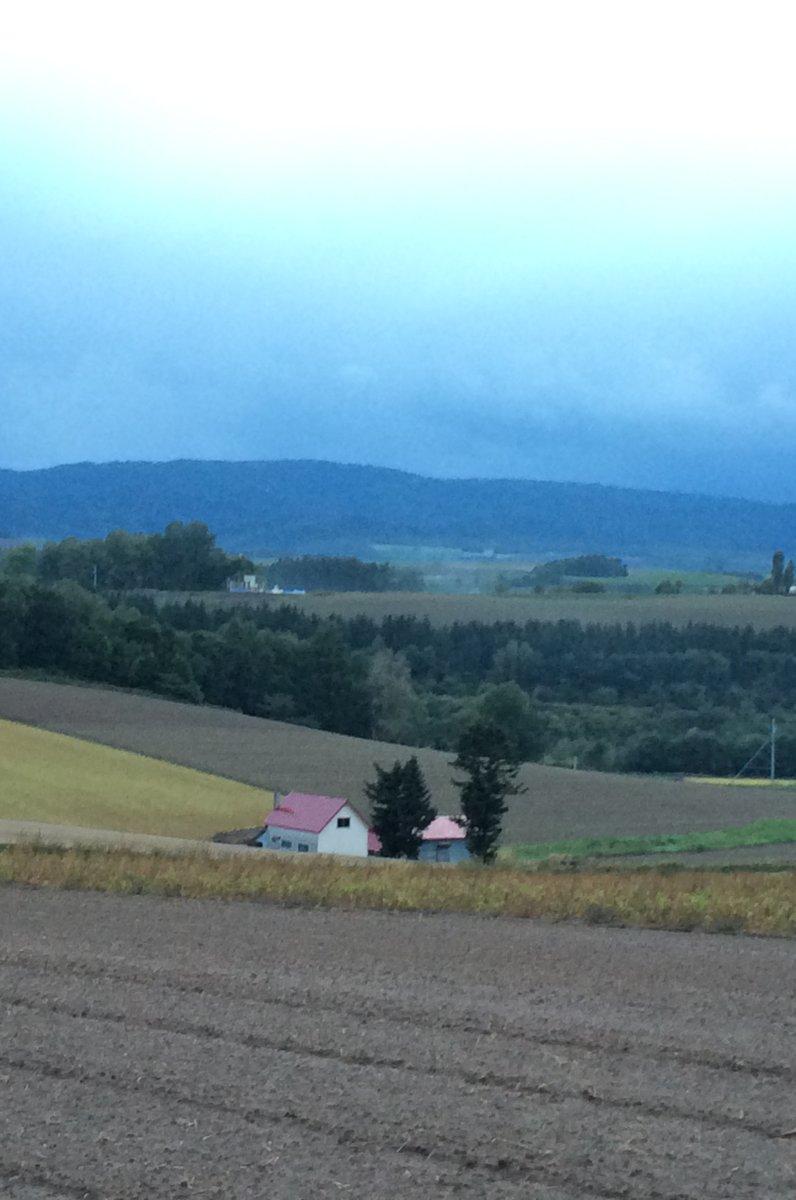 赤い屋根のある丘
