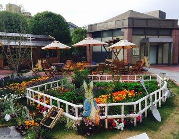 【期間限定】恵比寿ガーデンプレイスのピーターラビットカフェが可愛すぎ♡ちょっぴり寄り道でリフレッシュ