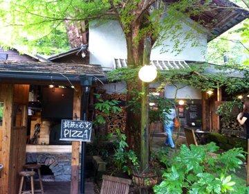 【夏にオススメしたい熊本県阿蘇ドライブ】森の中のオシャレカフェ→阿蘇山の絶景→イルミネーション☆