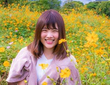 新橋・汐留でおしゃれな穴場デート!浜離宮恩賜庭園のコスモスが満開でした♡