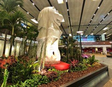 フォトジェニックなシンガポール・早朝便過ごし方‼︎チャンギ国際空港には無料マッサージ有