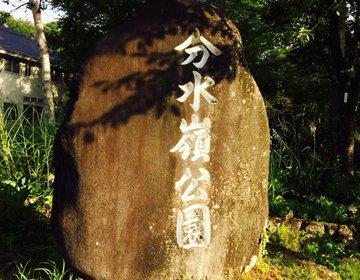 【分水嶺公園】「太平洋」と「日本海」の分かれ道 !?郡上隠れスポット👍