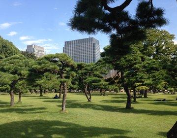 【外国人観光客におすすめ】皇居前広場観光の後は東京の中心で日本の和食を楽しむ!