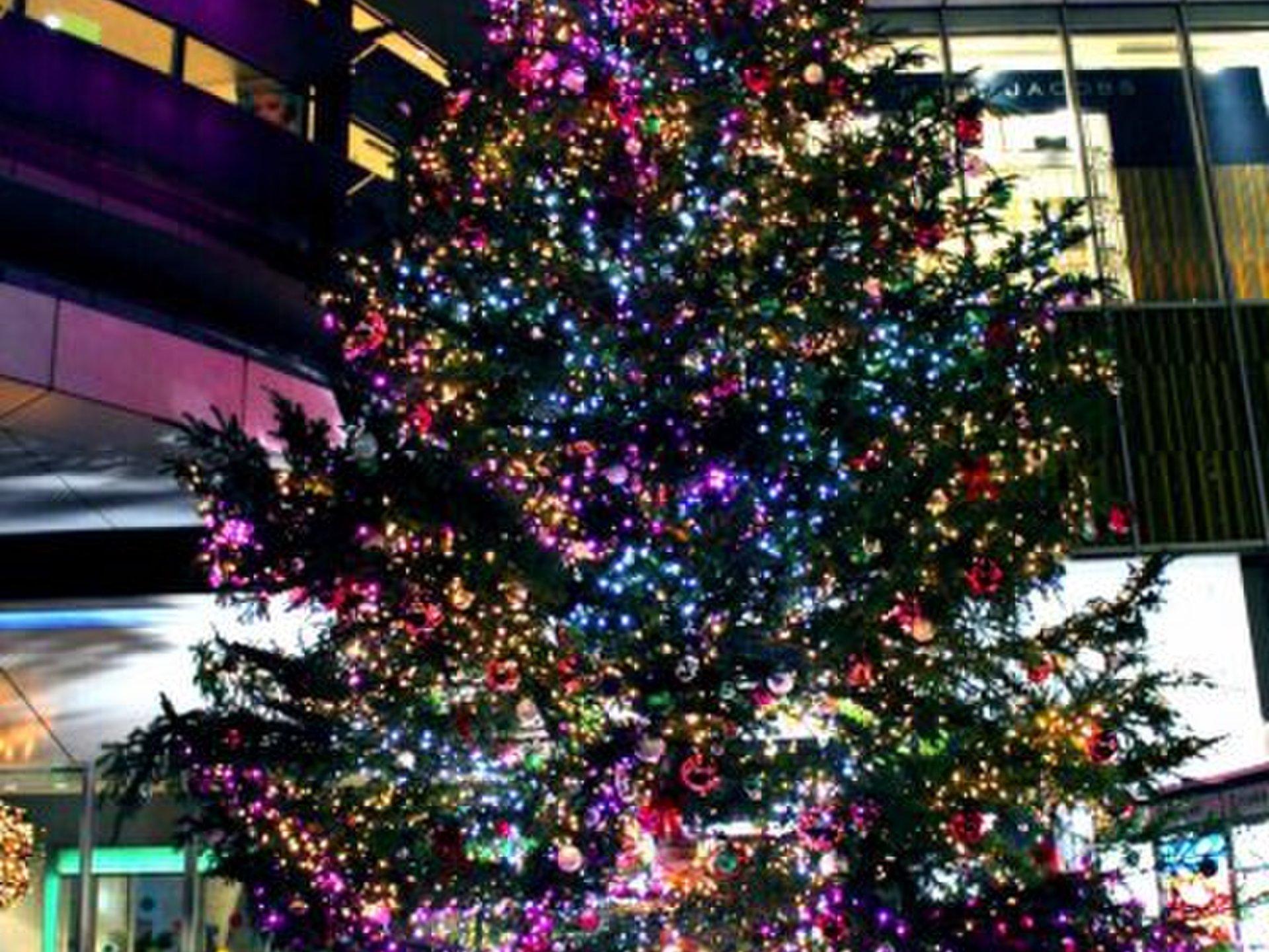恋人とこの冬絶対に見たい渋谷・原宿の巨大クリスマスツリー!23時まで行われるライトアップショーも