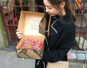 シドニー『Black Star Pastry』インスタ映え!不動の人気を誇る可愛いスイカケーキ