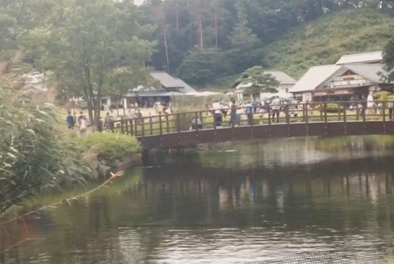 田園プラザ川場