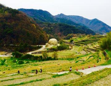 【西日本屈指の絶景スポット】瀬戸内の離島小豆島!自然あふれる絶対最高土庄町の絶景めぐり!