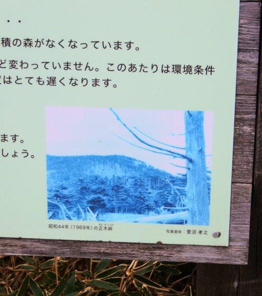 大台ケ原(日出ヶ岳)