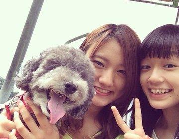 【伊豆高原の大自然と海の幸でリフレッシュ!】犬連れもOK!ワンコも一緒に楽しめる最高の夏旅行