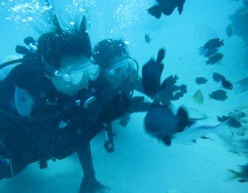 12月に沖縄でダイビング?!格安な冬の沖縄おすすめ1泊2日弾丸ツアー♡