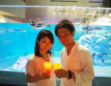 【期間限定!水族館デート/女子会で光るドリンクが無料プレゼント】すみだ水族館へ行くしかない!
