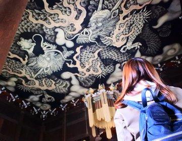 【京都・国宝】撮影可能!インスタ映え抜群のパワースポット!大迫力の双龍図に心願成就せよ!