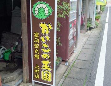 【富岡製糸場土産】異様にリアルな蚕型のお菓子を買いに行こう