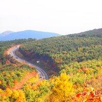 【東北6県ベスト観光スポットをそれぞれ紹介!】秋冬のおでかけにピッタリな自然&歴史&グルメが盛りだくさん!今度の休みにすぐ使えるプラン特集!
