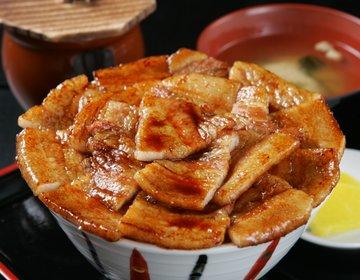 【どの豚丼を食べる?】北海道・帯広 究極のご当地グルメ「豚丼」5選!種類、選び方ガイド!