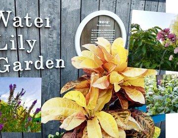 無料・池袋駅直結!オシャレなガーデンテラスや稲荷神社があるの知ってた?屋上庭園素敵です。