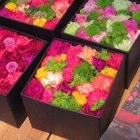 【女子へのプレゼントはやっぱりお花でしょ♪】表参道の花屋さんとカフェで特別なひと時をどうぞ!