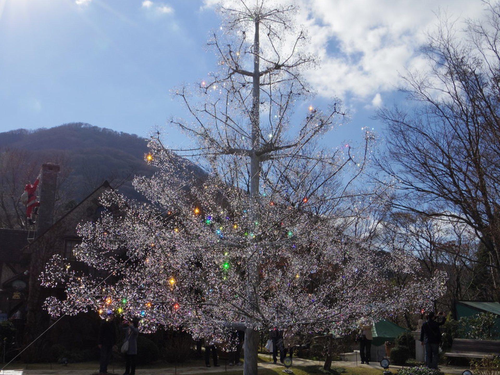おすすめ箱根デートスポット!箱根ガラスの森ミュージアム&星の王子様ミュージアムへ!