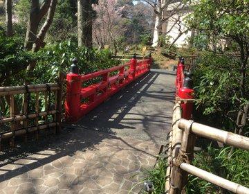 まるで都会のオアシス。椿山荘の庭園は、デートにも家族でのお散歩にもオススメなんです。
