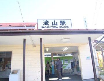 今、人口が増えている町。千葉県流山市の歴史と魅力を探る旅