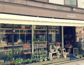 【鎌倉・江ノ島】実際に行って本当に美味しかったごはん屋さん【カフェ・海鮮丼・お団子】
