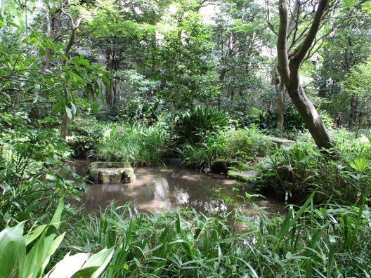小金井市立はけの森美術館