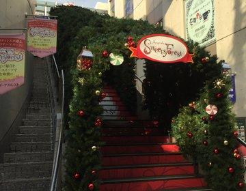 クリスマスメニュースタート!自由が丘スイーツフォレストで素敵なクリスマスを