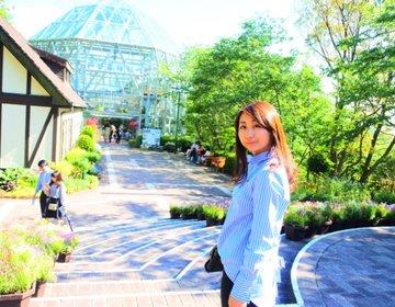【デートにおすすめ】神戸の魅力再発見!リニューアルした日本最大級の布引ハーブ園へ行こう!