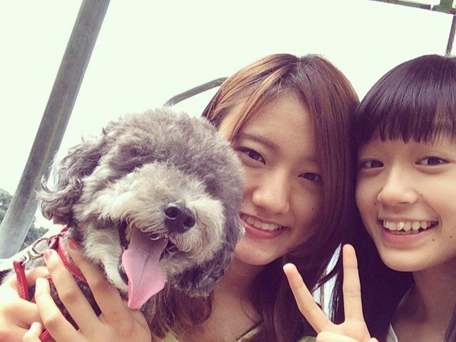伊豆高原の大自然と海の幸でリフレッシュ♪犬連れもOK!ワンコも一緒に楽しめる夏の観光プラン