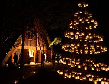 夏の軽井沢おすすめデートプラン! サマーキャンドルナイトに教会、ハルニレテラス♪