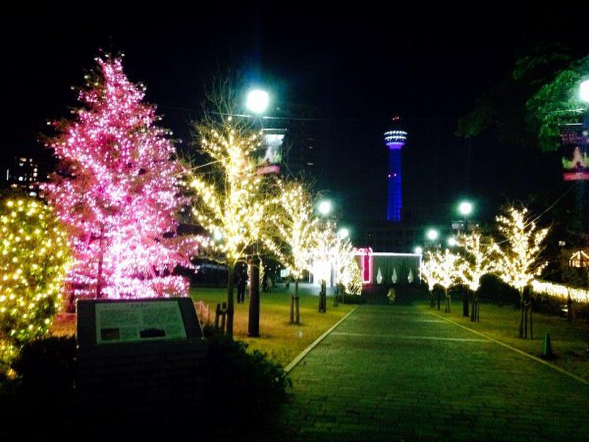 横浜・中華街でクリスマスのイルミネーションスポットを巡ろう!人気のコースをゆったりお散歩デート