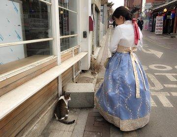 彼女を喜ばせたい彼氏発見! 韓国でチマチョゴリ体験!!
