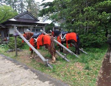 【隠岐島で鑑賞する流鏑馬!】今年の連休休みは隠岐の島町の水若酢神社へ!